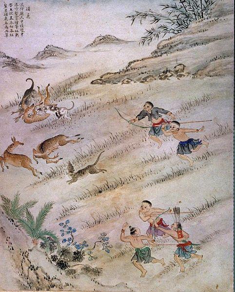 梅花鹿,打獵